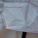 P1100271 modificata